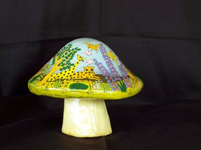 Another view of the mushroom.
