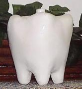 Tooth -Shaped Sweets Jar with Lid by Tammy Wilson