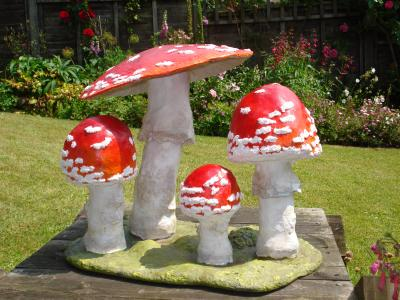 """Fungi"" by Jackie Hall"