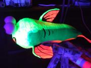glow fish by Geraint Rees