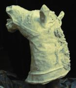Horse Head #2 of 6 (Click for details) by Patience