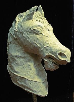 """Horse Head #6 of 6 (Click for details)"" by Patience"