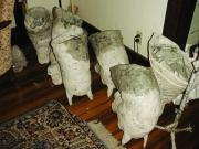 Horse Heads Drying.....  (Click for details) by Patience