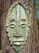 Mask on tree by David Peterson