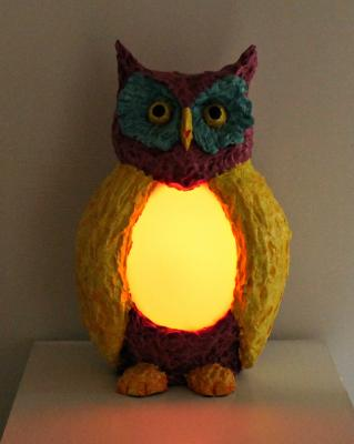 """Colorful Owl with light on"" by Philip Bell"