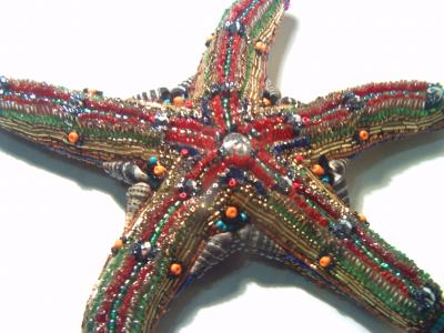 """starfish 2"" by Alexander Shved"