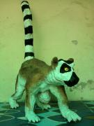 Lemur (Another View) by Roberto Lujan