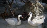 Limited Edition Swan Ornaments by Sarah Hage