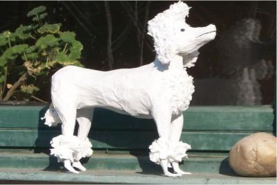 """Dog"" by Sarolta Kurucz"