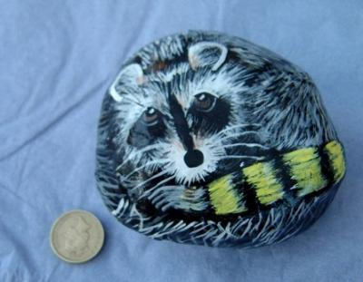 """Raccoon on a 'pebble'"" by David Osborne"
